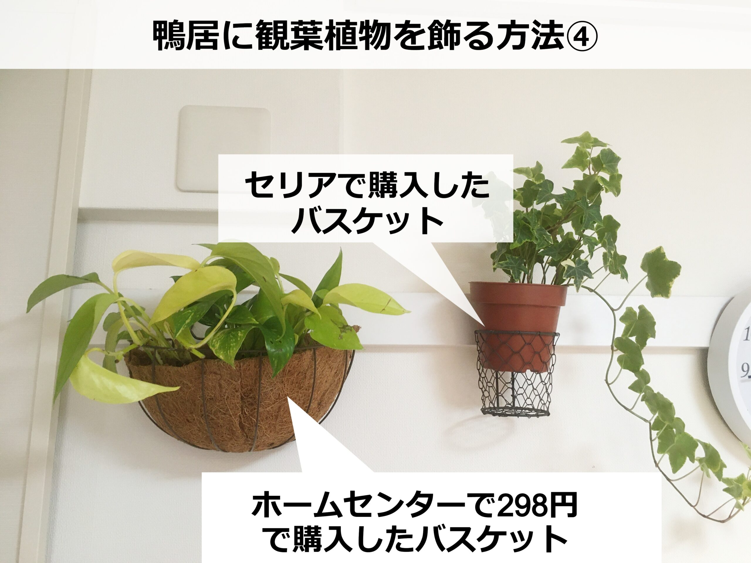 鴨居に飾った観葉植物