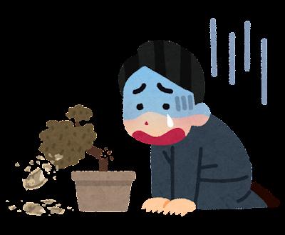 枯れた植物にショックを受ける人