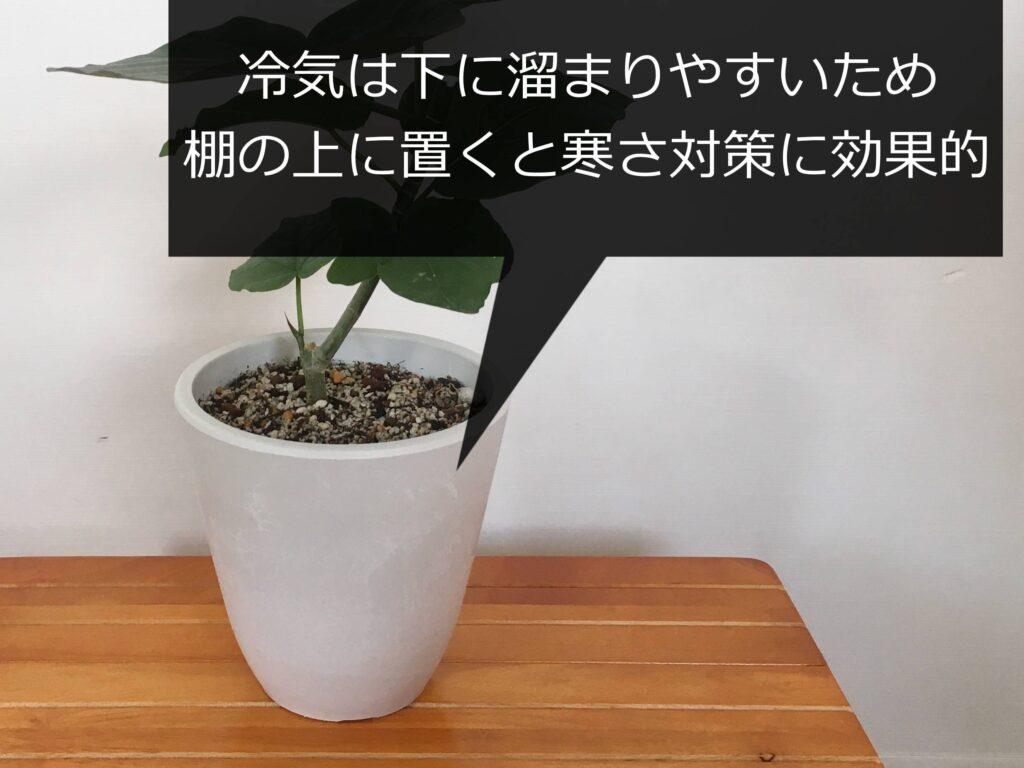 棚の上に置いた鉢植え