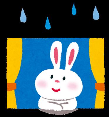梅雨時期の兎