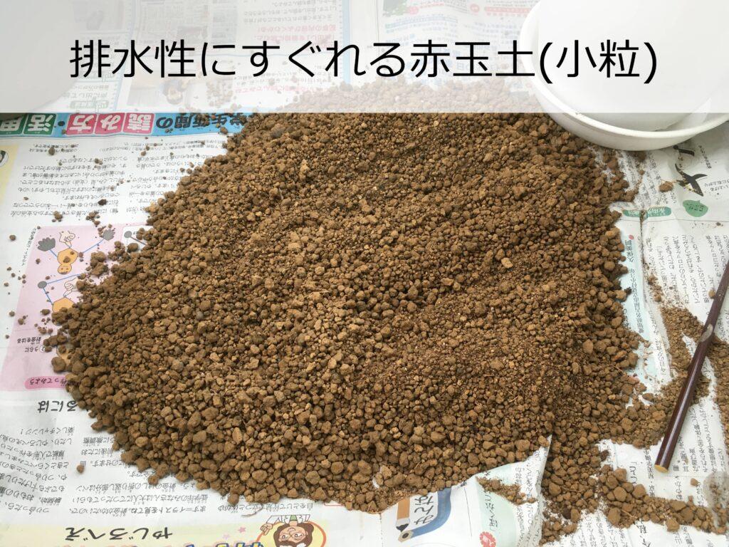 挿し床に使用する赤玉土(小粒)